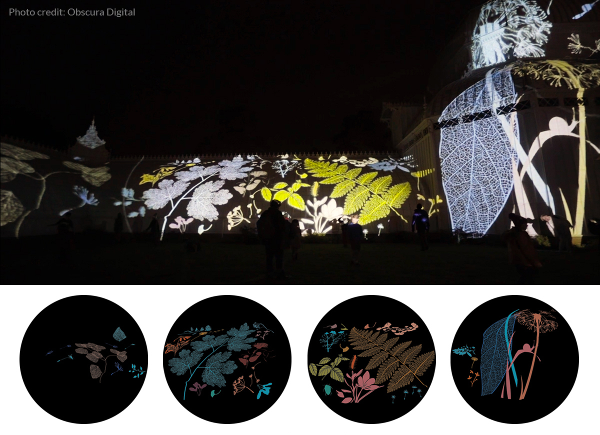 Flower themed gobos projected on The San Francisco Conservatory of Flowers.